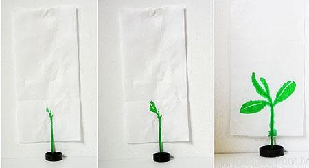 Plant poster by Oscar Diaz